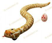 Had hnědý RC