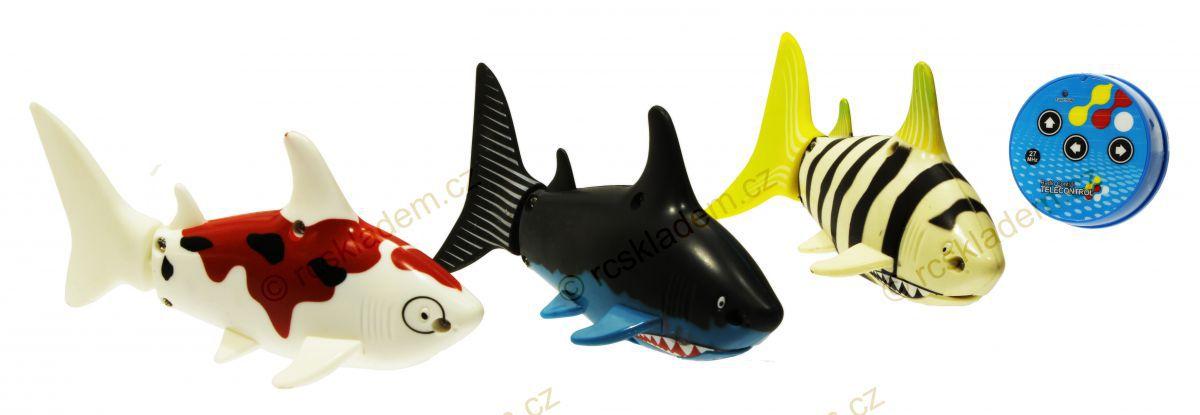 rc mini žralok