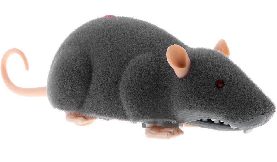 RC model krysa pobaví a zároveň vystraší všechny členy rodiny. Pohyblivá hračka krysy s otřásajícím se ocáskem je vhodná pro děti, dospělé, i domácí mazlíčky.