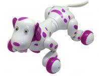 RC Robot Dalmatin s neuvěřitelným množstvím funkcí