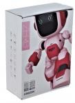 rc-robot